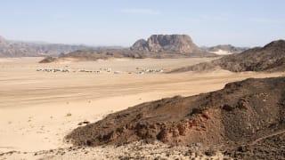 Beduinen Dorf Sinai, Dahab, Ägypten