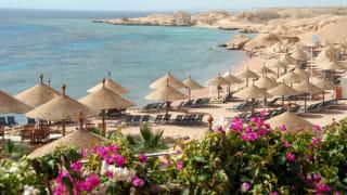 Strand, Sharm el Sheikh, Ägypten