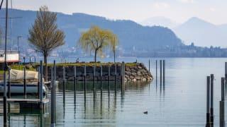 Hafen, Lochau, Österreich
