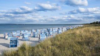 Strandkörbe am Strand von Breege, Insel Rügen, Deutschland