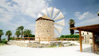 Windmühle in Antimachia, Kos, Griechenland