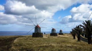 Windmühlen, Camacha, Porto Santo, Portugal