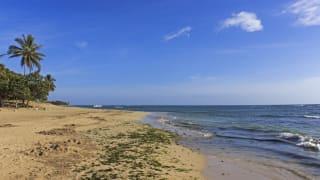 Playa Dorada, Dominikanische Republik