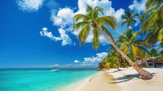 Tropical Beach, Punta Cana, Dominikanische Republik