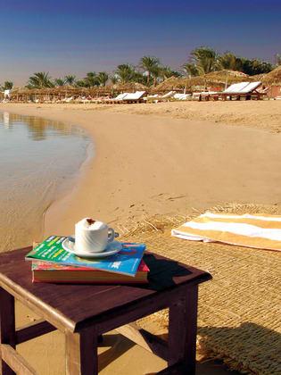 Vogel am Strand des Aqua Hotels Hurghada © Thomas Zwicker