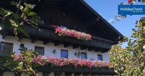 Eggendorf single kino - Grodietmanns mdels kennenlernen