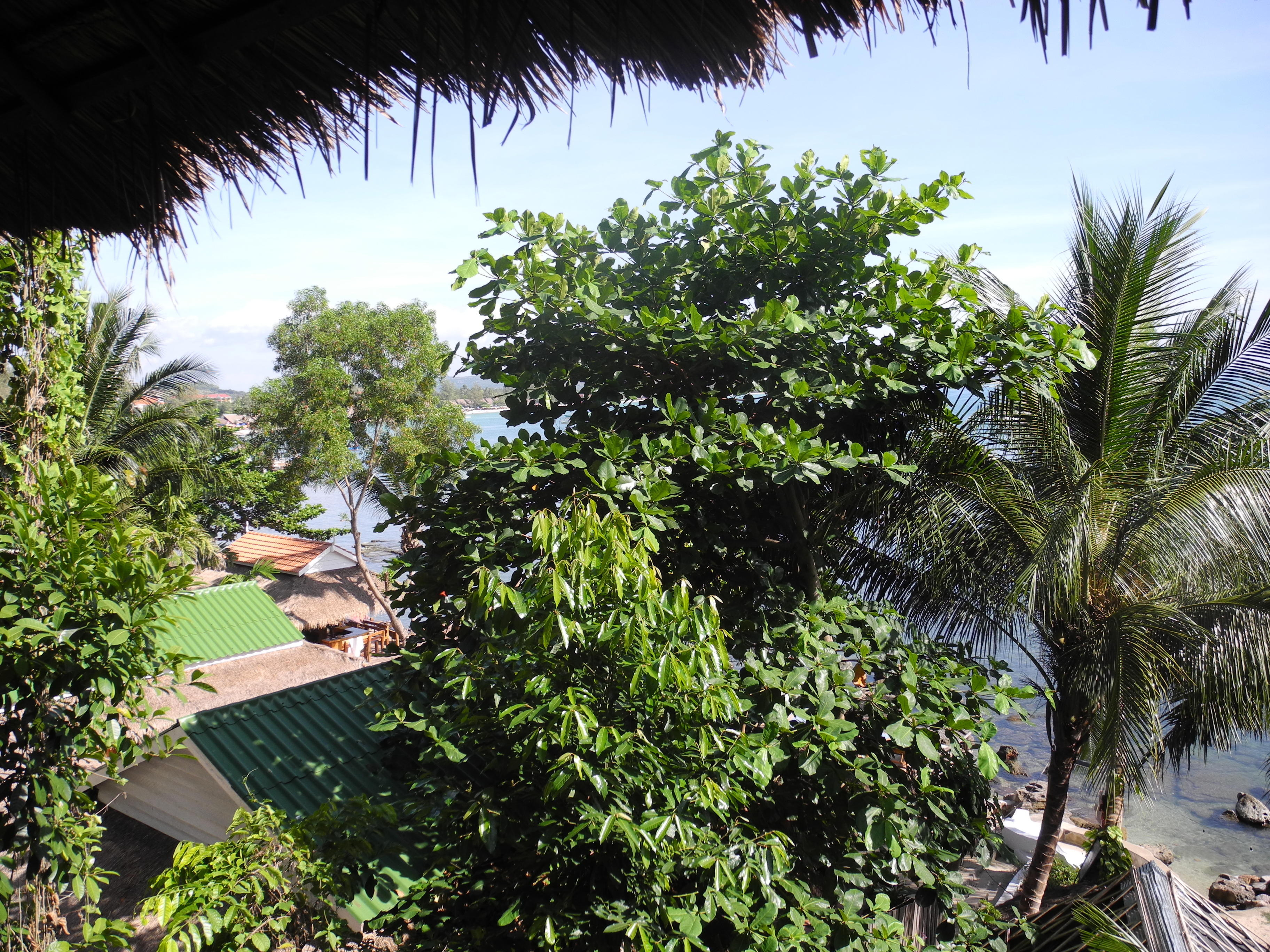 writing about kampong som resort