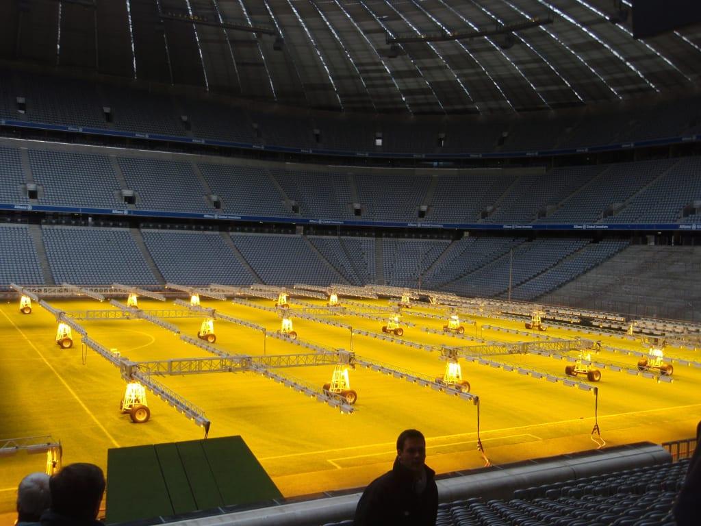 Allianz Arena Rasen