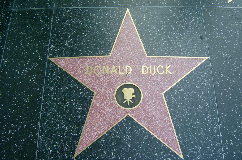 bild stern von donald duck zu hollywood walk of fame in los angeles. Black Bedroom Furniture Sets. Home Design Ideas