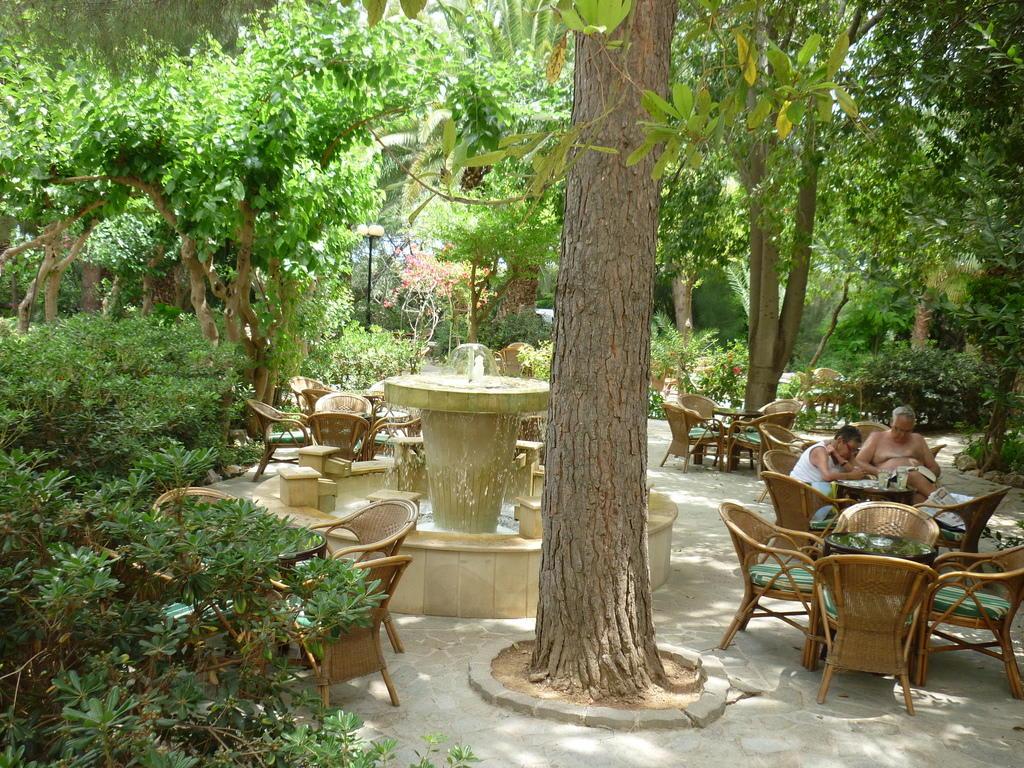 Bild garten sitzecke zu apollonia beach resort spa in - Garten sitzecke ...