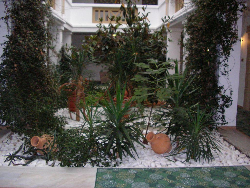 bild kleiner garten im innenbereich zu aldemar royal mare thalasso resort in anissaras. Black Bedroom Furniture Sets. Home Design Ideas