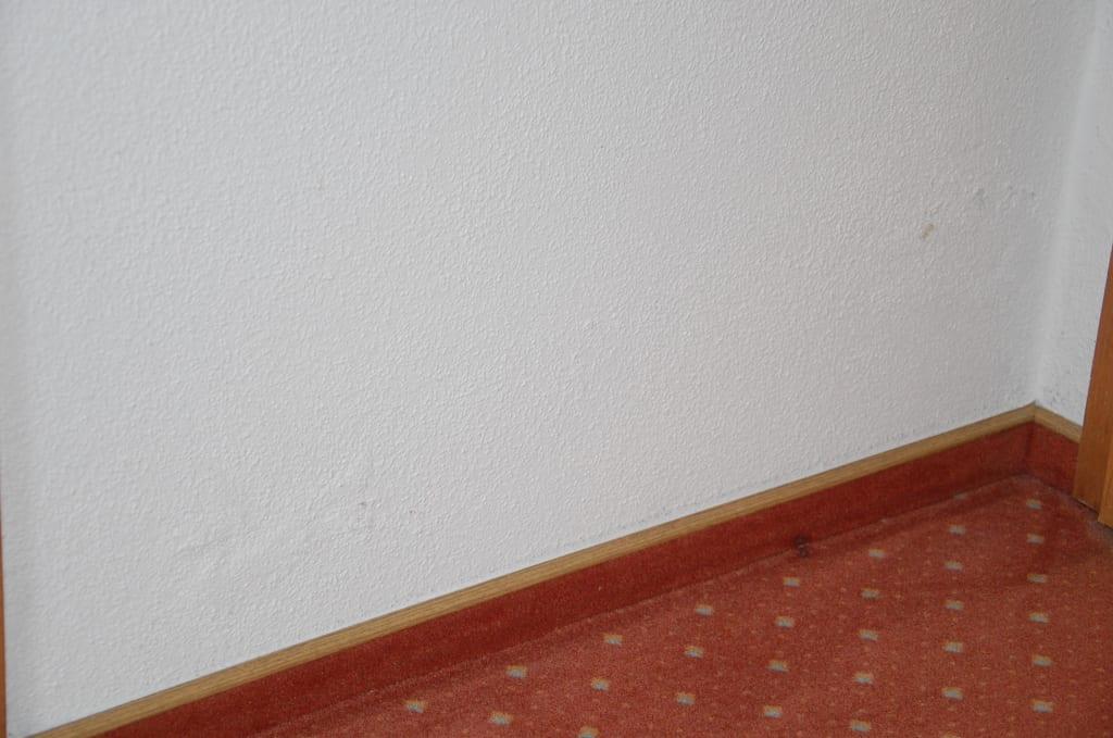 bild feuchte wand zum badezimmer mit wasserflecken zu hotel heuboden in umkirch. Black Bedroom Furniture Sets. Home Design Ideas