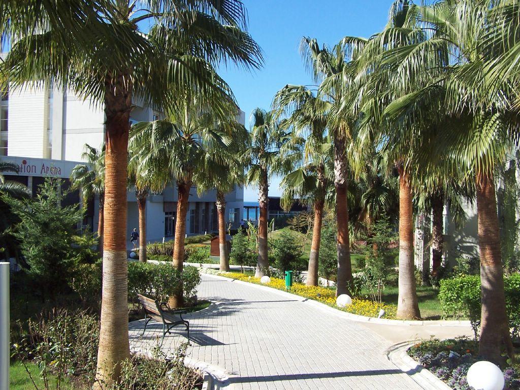 Garden - Aska Hotel Buket Resort & Spa