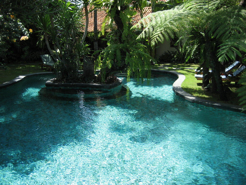 bild pool garten zu villa des indes 1 2 in seminyak. Black Bedroom Furniture Sets. Home Design Ideas