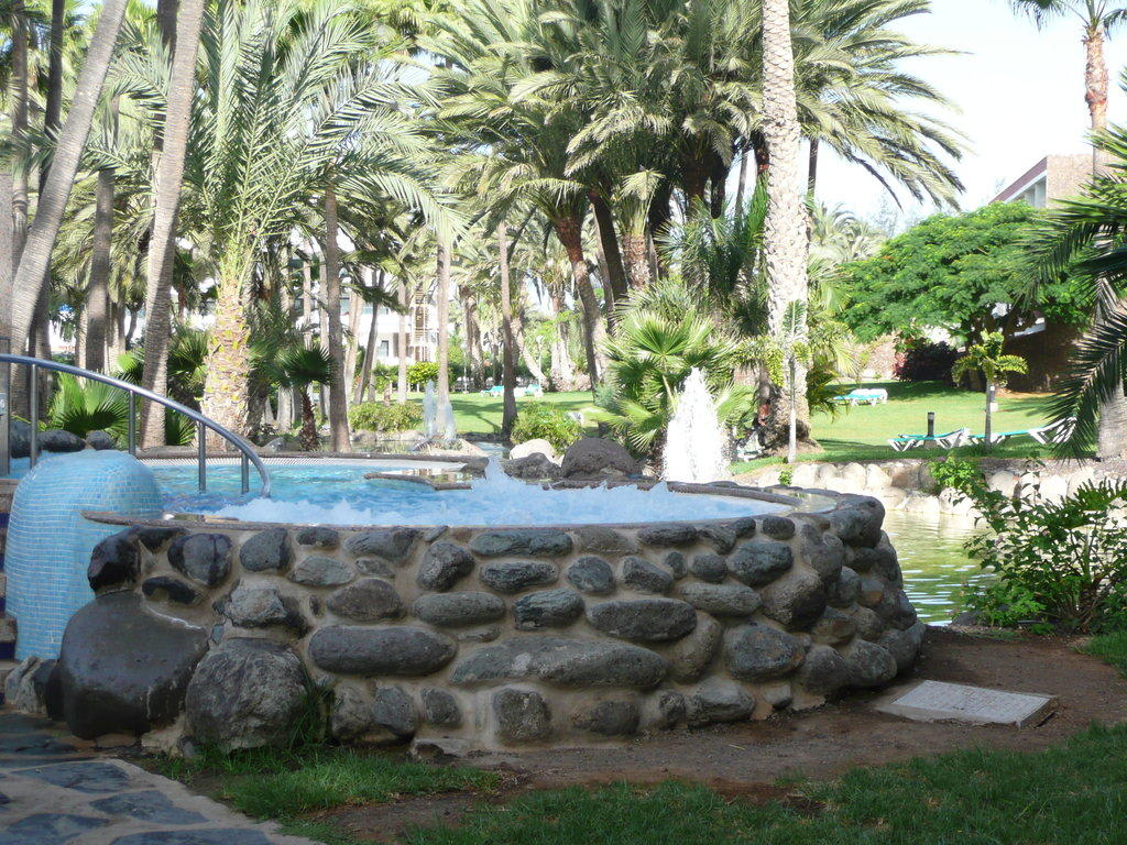 bild garten mit whirlpool anlage zu hotel riu palace oasis in maspalomas. Black Bedroom Furniture Sets. Home Design Ideas