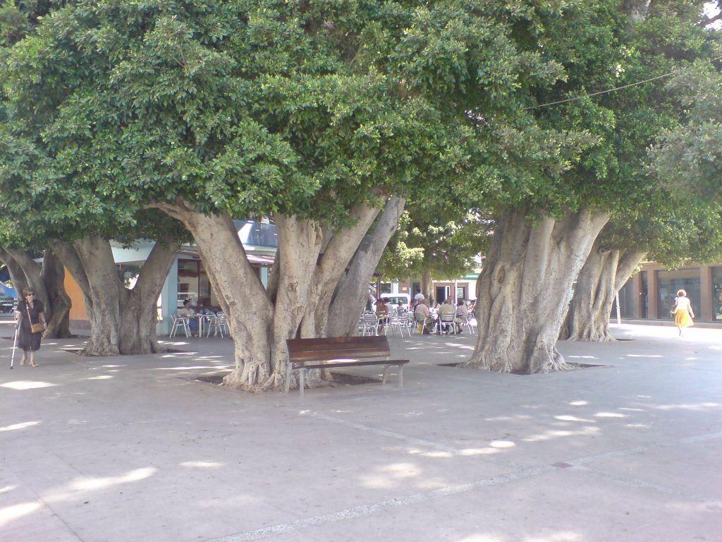 Bildergebnis für san sebastian de la gomera Plaza de Constitución