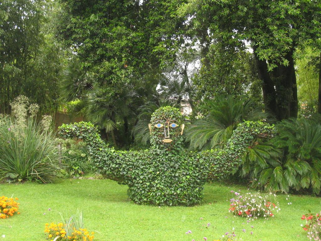 Bild Garten Von Andre Heller Zu Botanischer Garten André Heller In