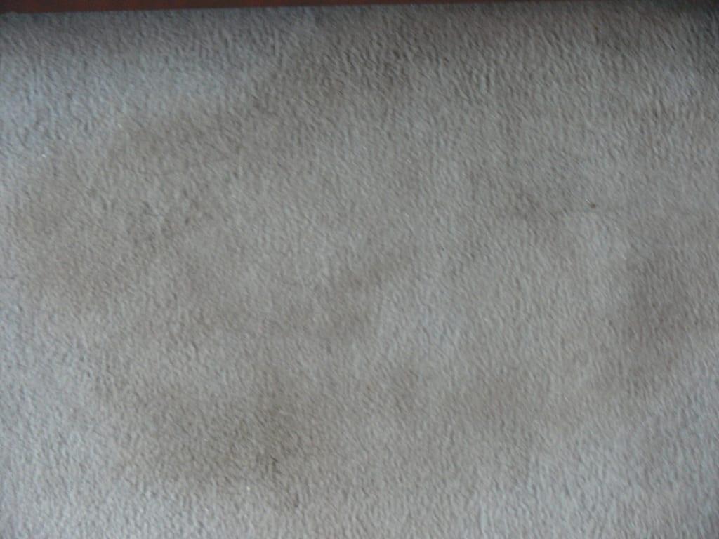 Bild ( Teppich ) Jemand gestorben? zu Landhaus Zum Alten