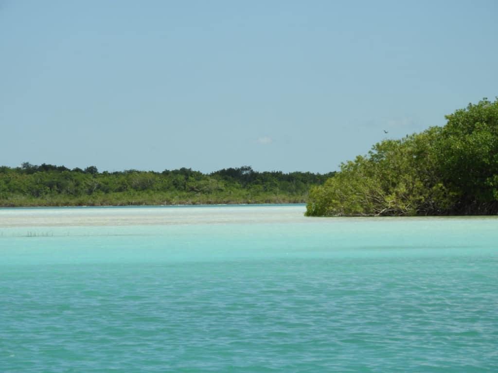 Bild Lagune Der Sieben Farben In Bacalar Zu Santi Tour Playa Del