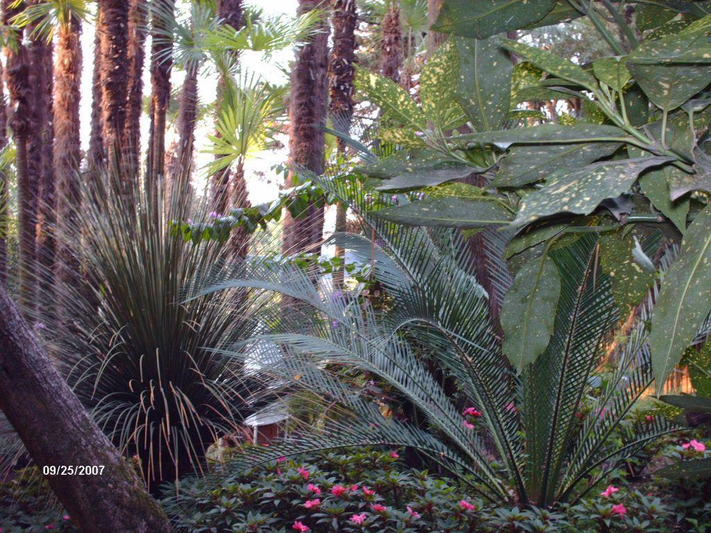 Bild Botanischer Garten Gardone Zu Botanischer Garten André Heller