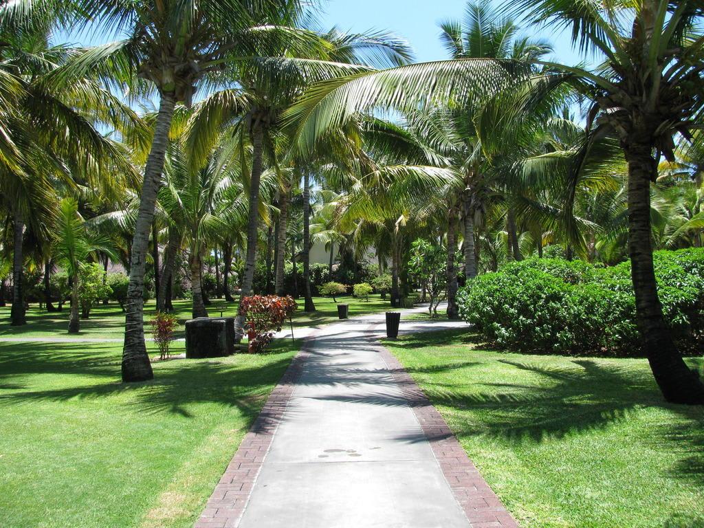 bild z hlt zu den sch nsten gartenanlagen in mauritius zu hotel la pirogue in flic en flac. Black Bedroom Furniture Sets. Home Design Ideas