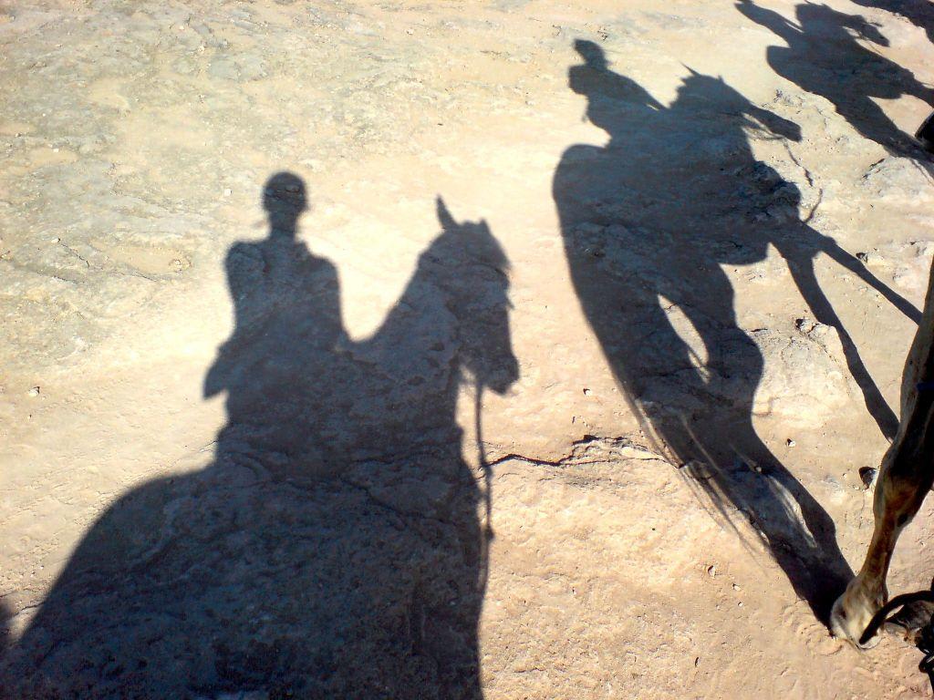 bild quotschattenbilder hoch zu pferdquot zu reiten can picafort
