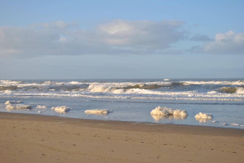 bild schaumschl gerei im winter zu strand zandvoort in. Black Bedroom Furniture Sets. Home Design Ideas