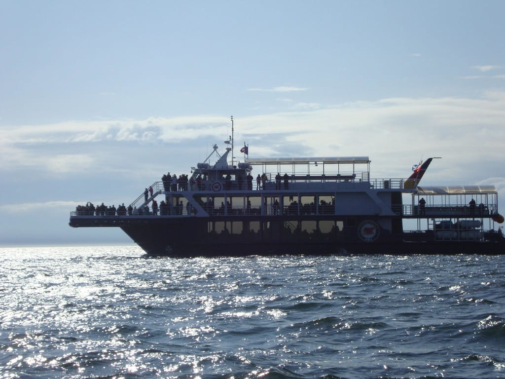 A big boat also for a whale watch cruise