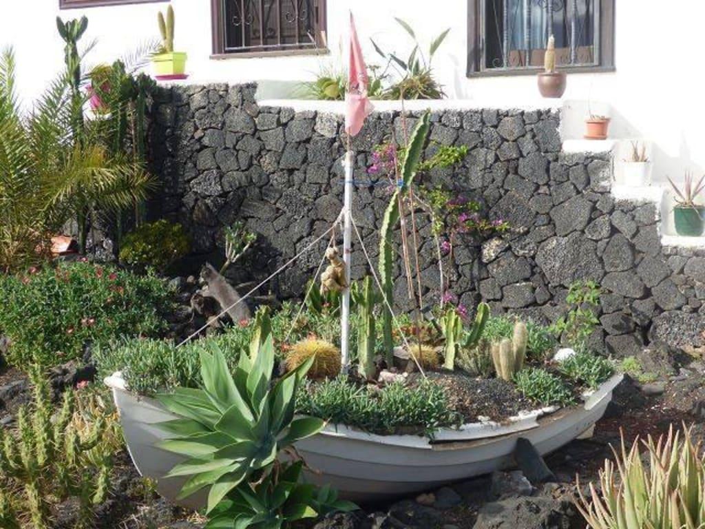 Bild Schone Garten Zu Hafen Puerto Del Carmen In Puerto Del Carmen