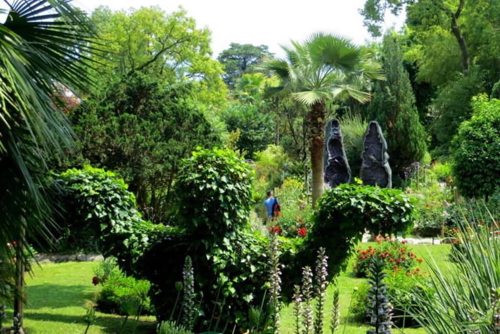 Bild überblick Mit Fantasie Figur Zu Botanischer Garten André