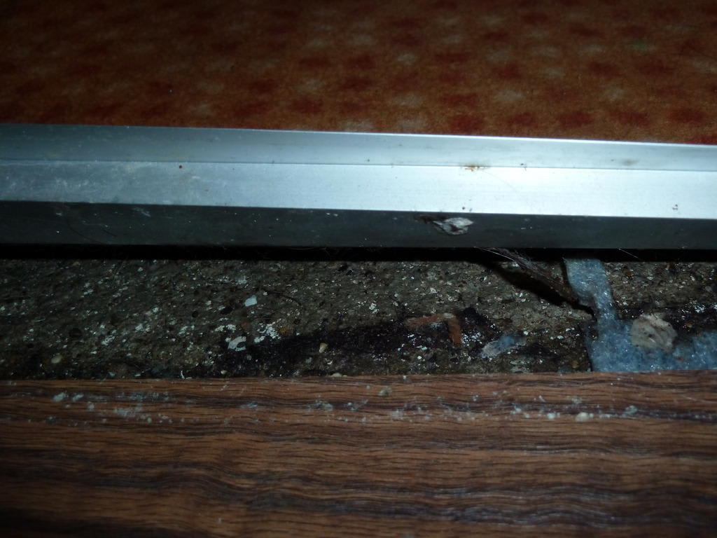 Bild Schimmel unterm Teppich zu Hotel Limak Lara de Luxe