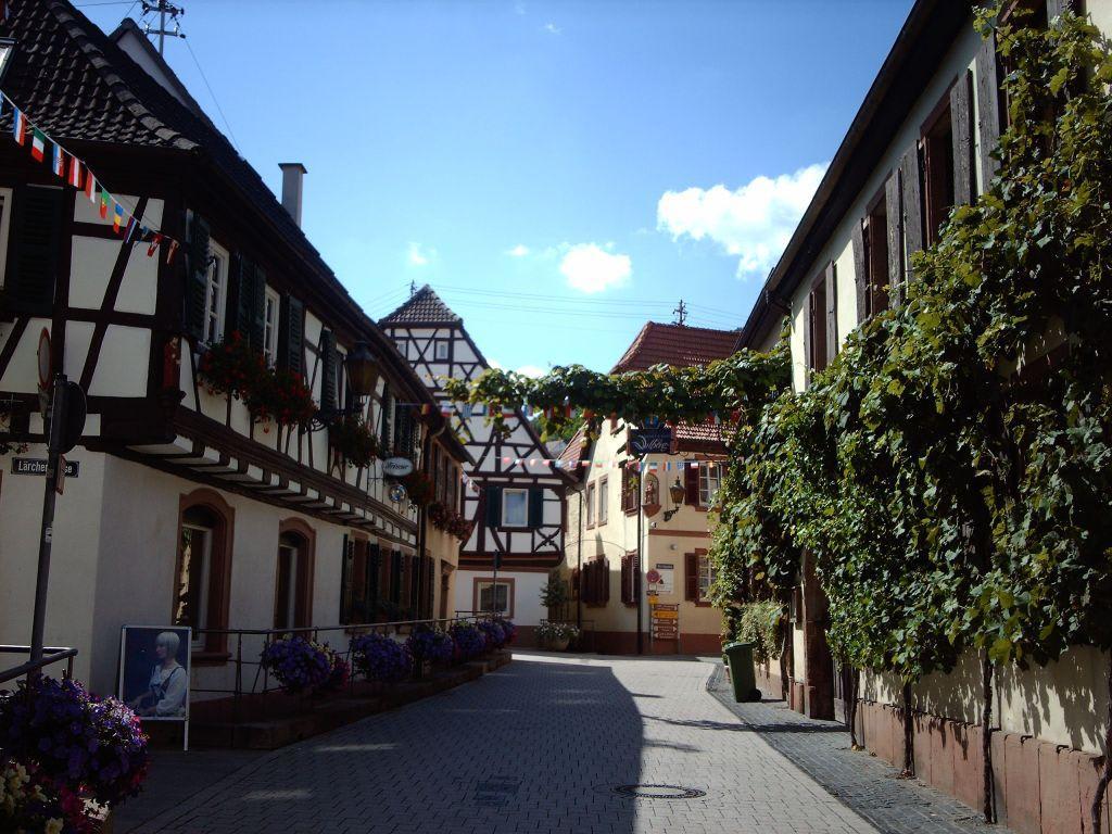 St. Martin/ Pfalz Bilder Stadt/Ort Altstadt St. Martin