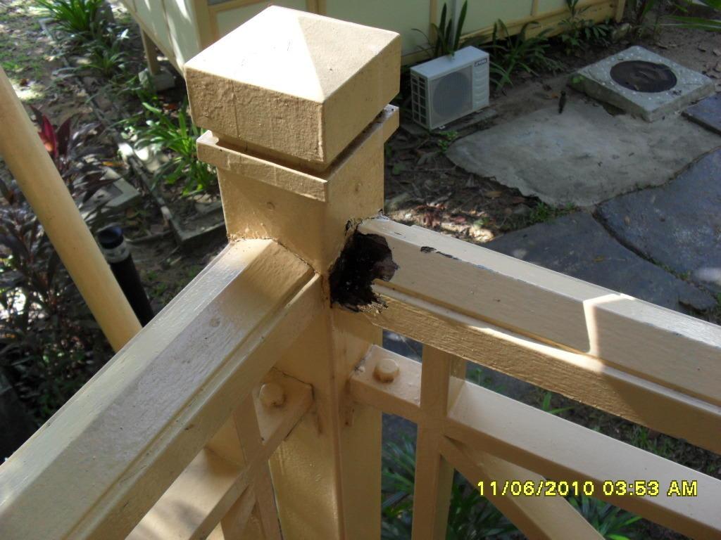 bild veranda deluxe cabana termiten fressen alles auf zu. Black Bedroom Furniture Sets. Home Design Ideas