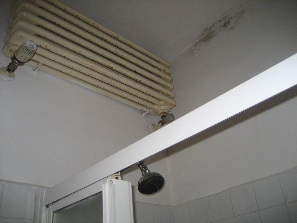bild schimmel und dreck in der dusche zu hotel splendor. Black Bedroom Furniture Sets. Home Design Ideas