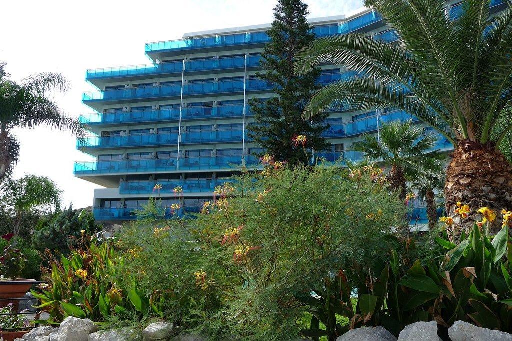 Bild exotische blumen zu hotel calypso beach in faliraki for Exotische hotels