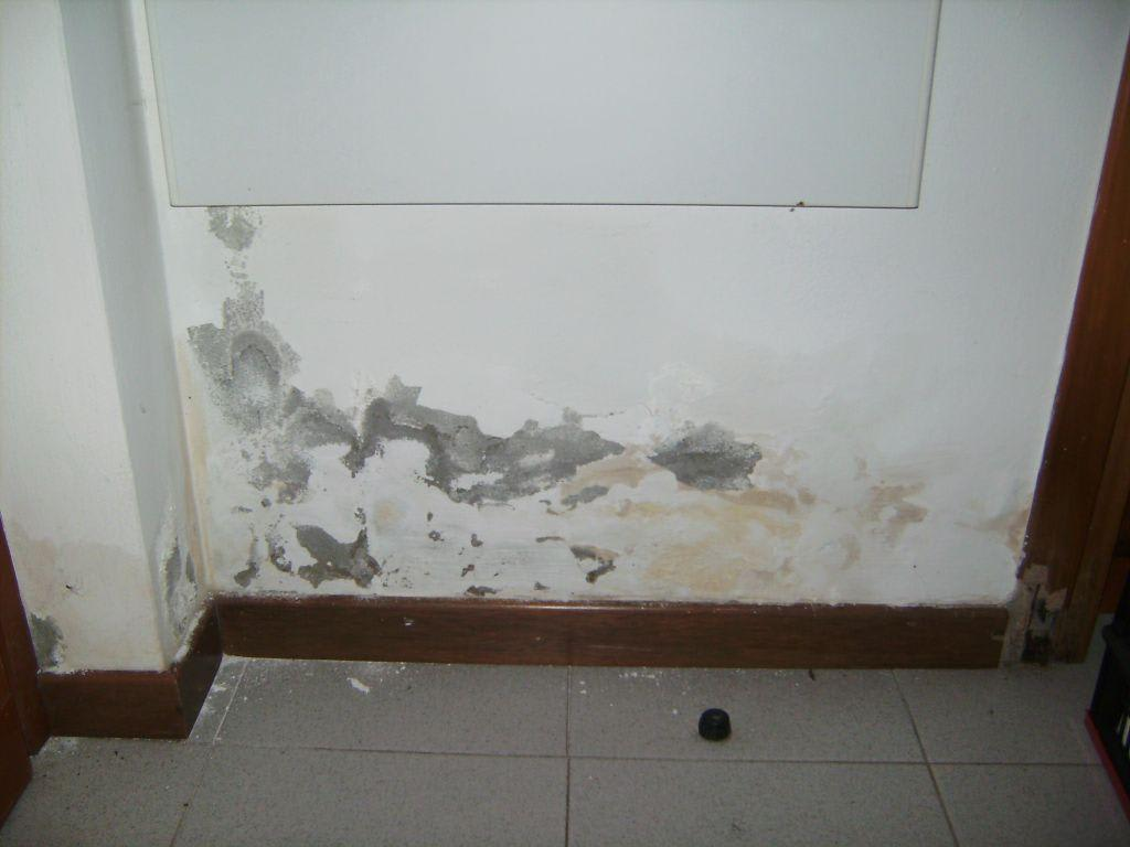 bild wasserschaden an der wand zu residence tiglio in sirmione. Black Bedroom Furniture Sets. Home Design Ideas