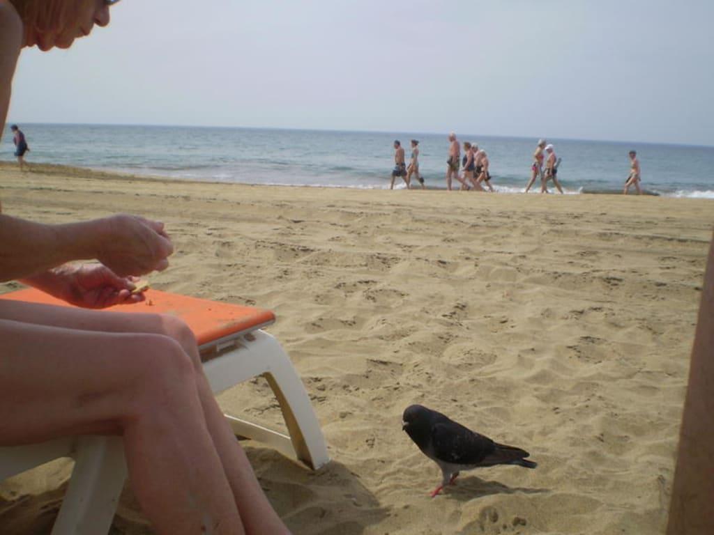 Bild Am FKK Strand zu Strand Playa del Ingles in Playa