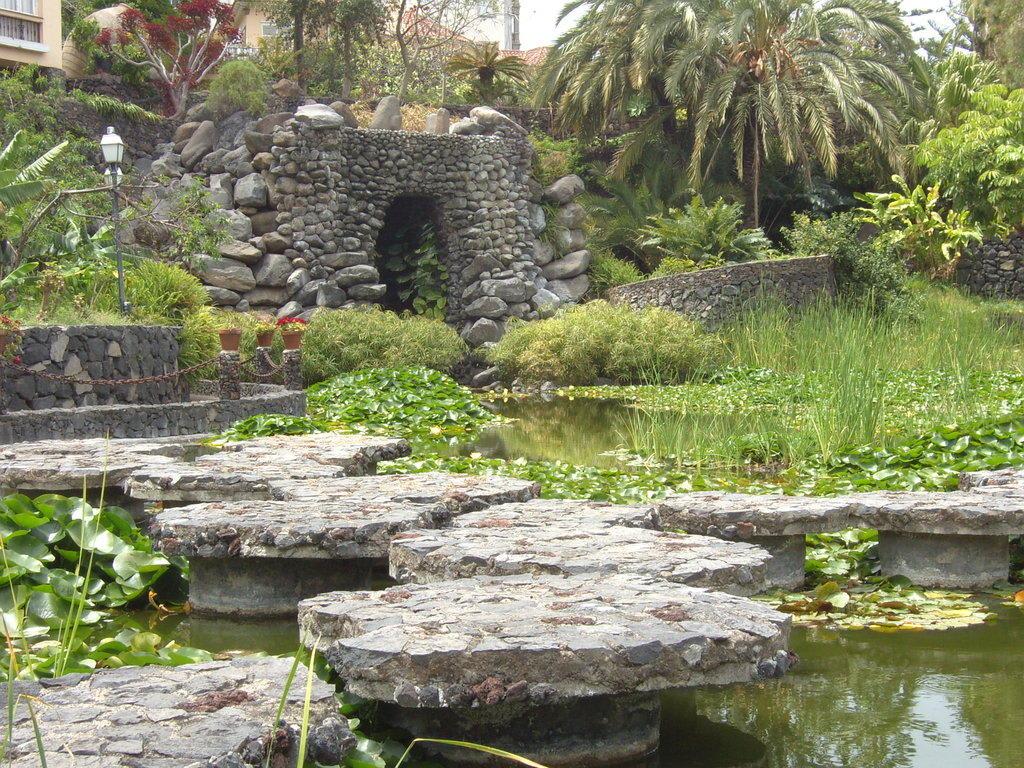 Bild wasserpark zu jard n acu tico risco bello in puerto for Jardin acuatico