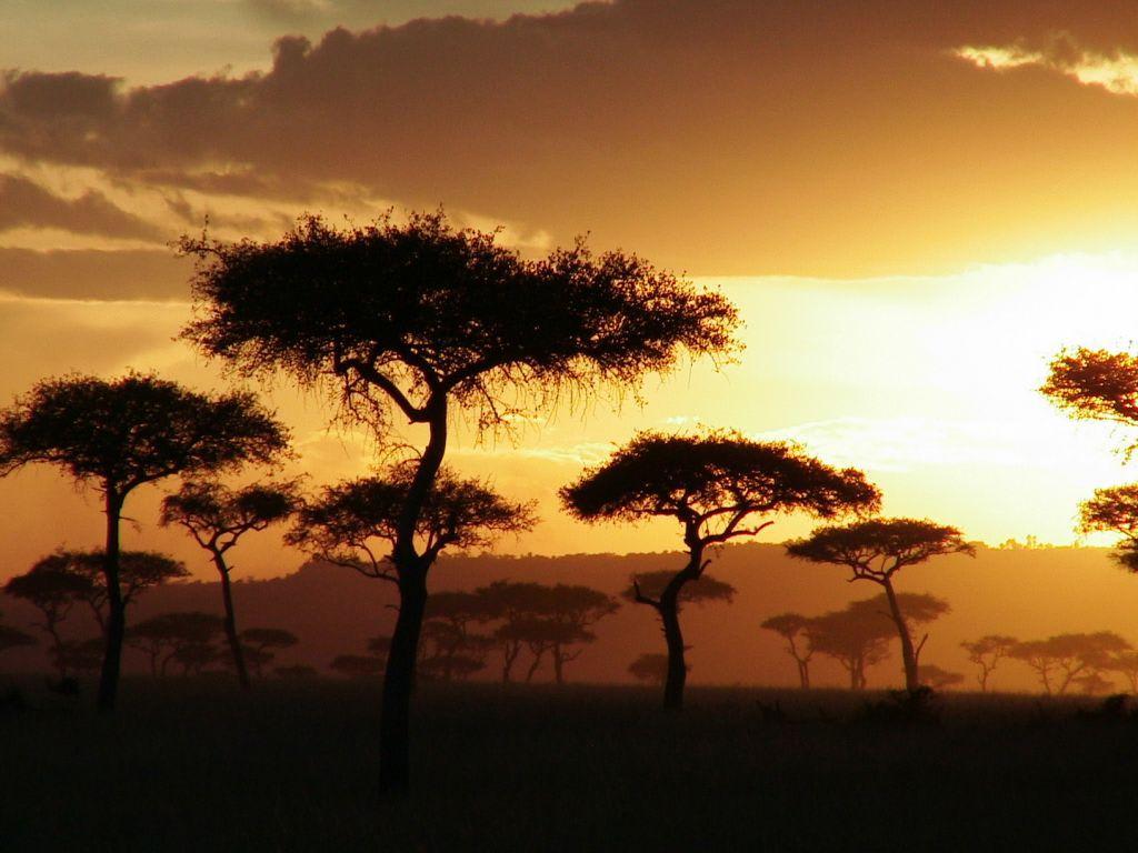 bild sonnenuntergang ber afrika zu masai mara safari in. Black Bedroom Furniture Sets. Home Design Ideas