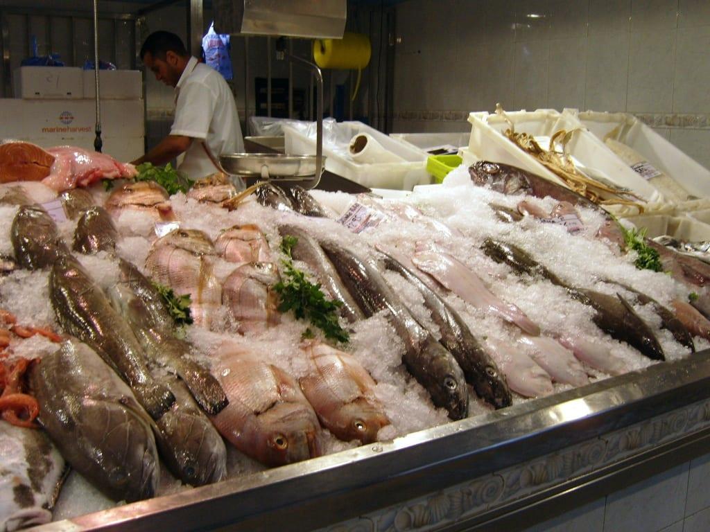 Bilder Die Fischer Präsentieren Ihre Fische Reisetipps