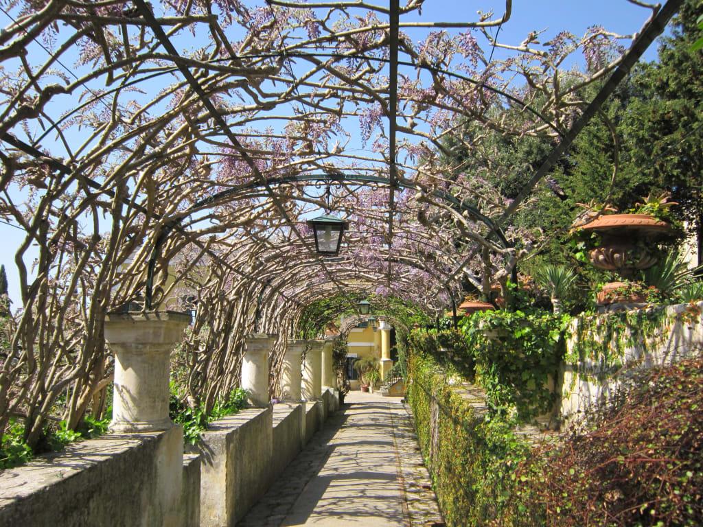 Bild gartenanlagen auf dem weg villa jovis zu villa jovis in capri - Gartenanlagen bilder ...