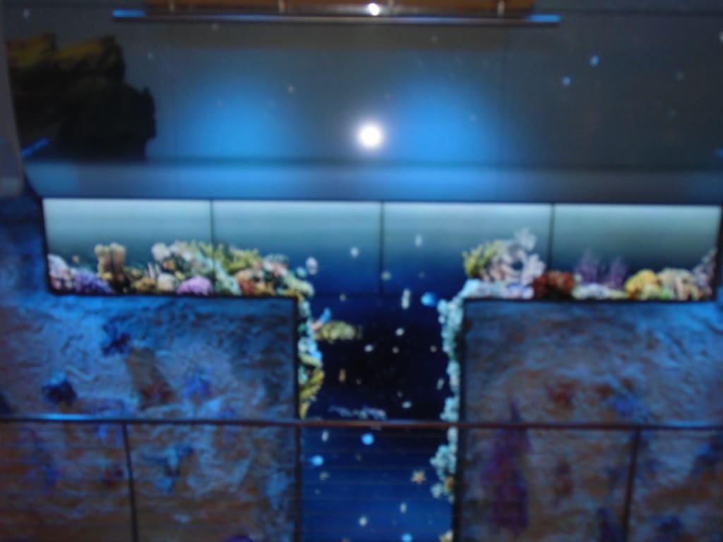 bild animierte aquariumwand zu aidastella in. Black Bedroom Furniture Sets. Home Design Ideas