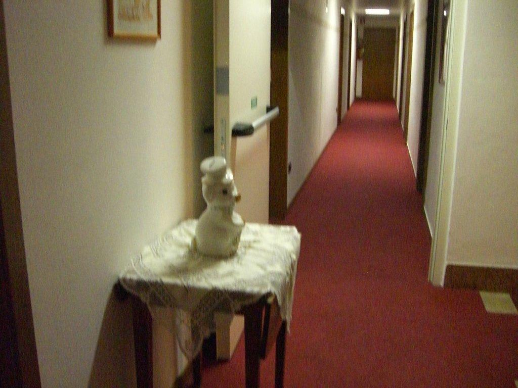 bild dekoration im flur zu hotel pace in torri del benaco. Black Bedroom Furniture Sets. Home Design Ideas