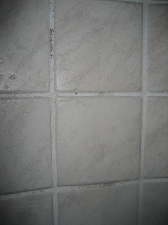 Flusskiesel Dusche Verlegen : Pin Flusskiesel In Der Dusche on Pinterest