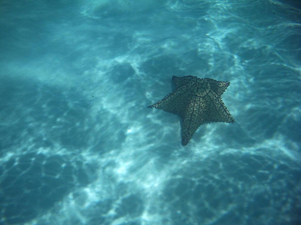 Underwater (other)