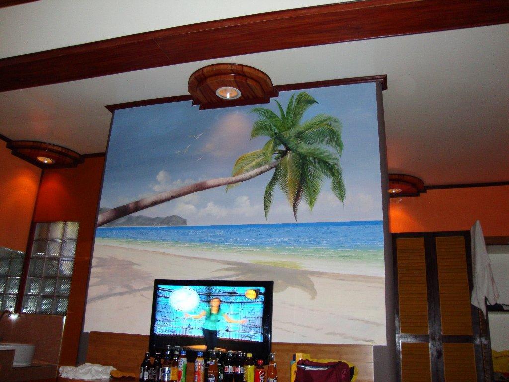 Bild TV vor der Trennwand im Chalet zu Boracay Beach Chalets in W -> Tv Trennwand