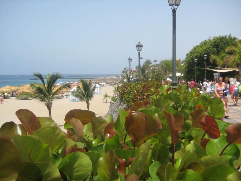 Beach/Coast/Harbor