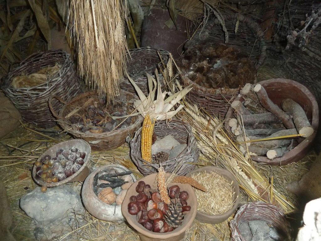 Steinzeit Bonn nahrungsmittel in der steinzeit bild steinzeitdorf kussow in damshagen