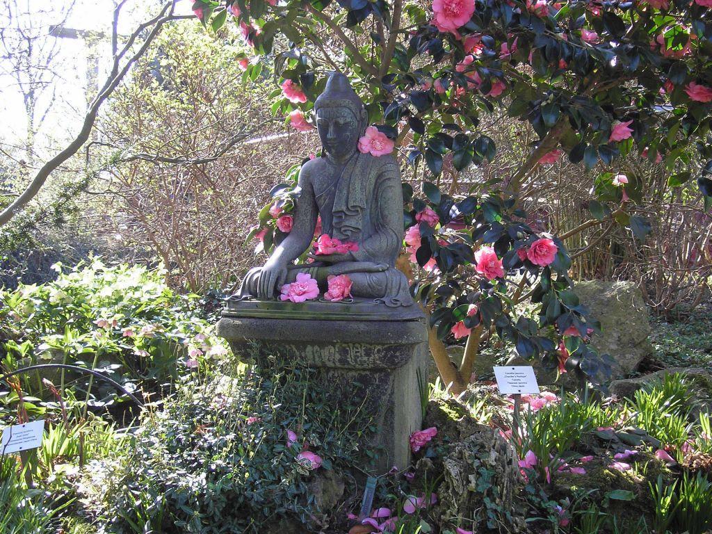 Bild statue im japanischen garten zu japanischer garten for Leverkusen garten