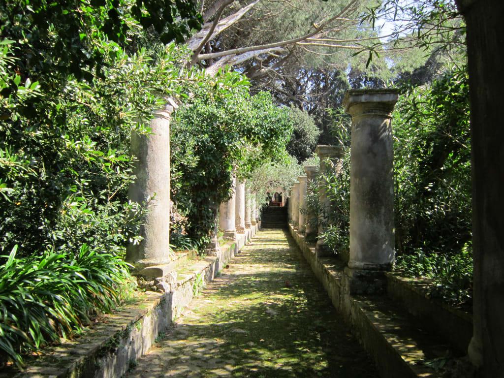 Bild gartenanlagen auf dem weg villa jovia zu villa jovis in capri - Gartenanlagen bilder ...